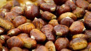 chestnuts from Castanea